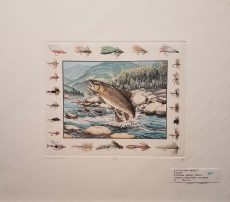 Brook Trout by Steve Strickland