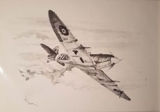 Spitfire by Hal Tacker